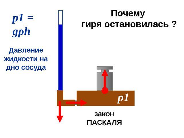 р1 = gρh р1 Давление жидкости на дно сосуда закон ПАСКАЛЯ Почему гиря остано...