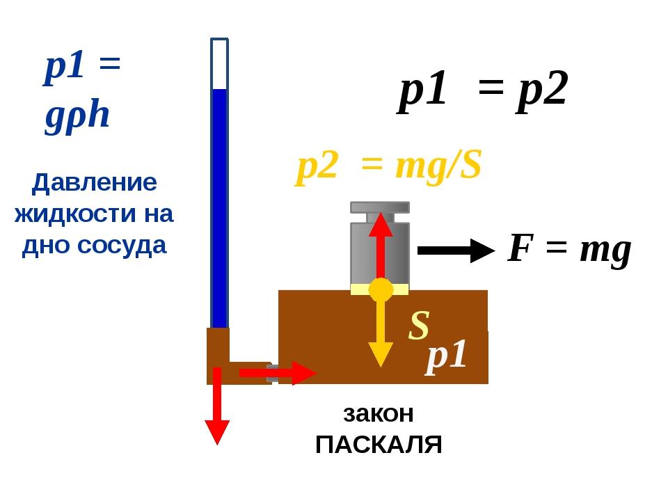 р1 = р2 р1 = gρh Давление жидкости на дно сосуда р1 закон ПАСКАЛЯ F = mg S р...
