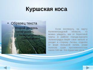 Куршская коса Если взглянуть на карту Калининградской области, то можно увиде