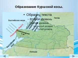 Образование Куршской косы. Балтийское море Калининградский п-ов Литва Польша
