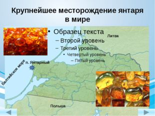 Крупнейшее месторождение янтаря в мире п. Янтарный Балтийское море Литва Поль