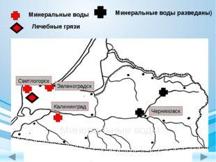 Минеральные воды Минеральные воды разведаны) Лечебные грязи Калининград Зеле