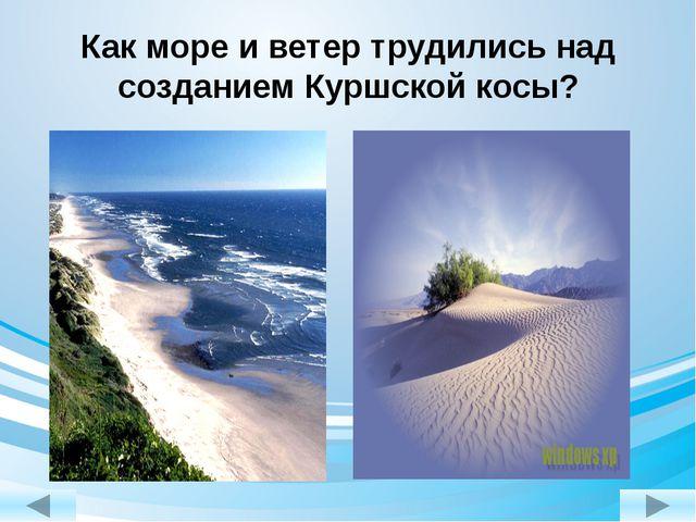 Как море и ветер трудились над созданием Куршской косы?