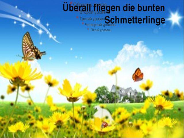 Überall fliegen die bunten Schmetterlinge
