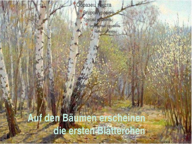 Auf den Bäumen erscheinen die ersten Blätterchen