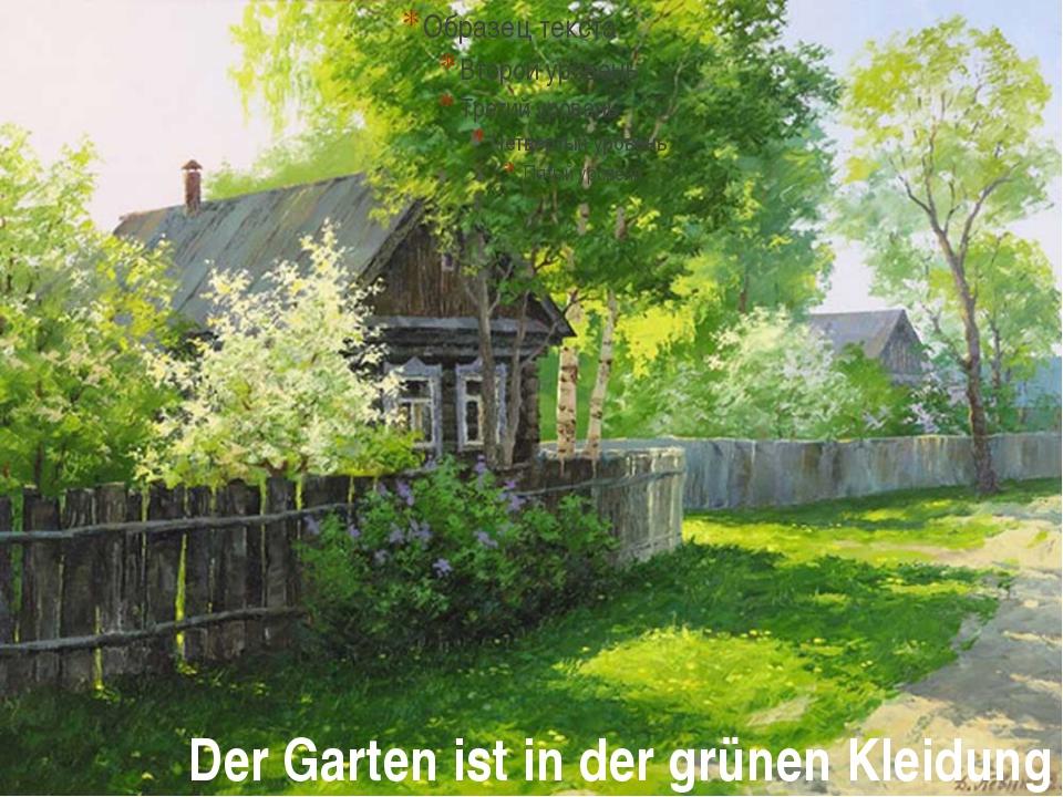 Der Garten ist in der grünen Kleidung