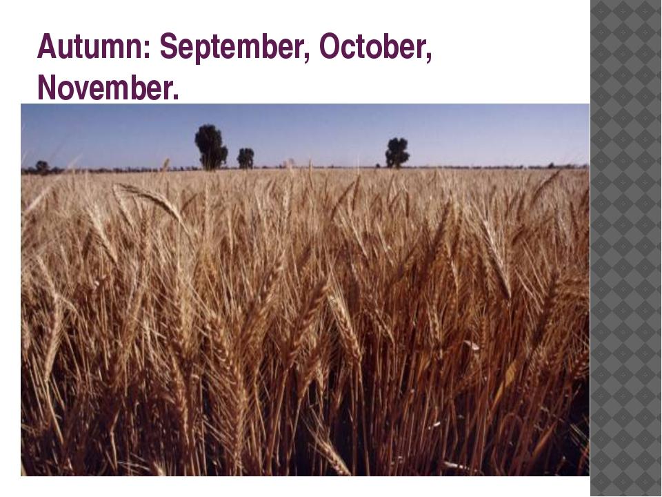 Autumn: September, October, November.
