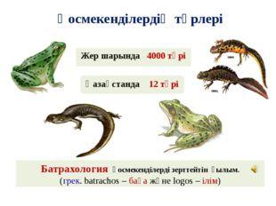 Қосмекенділердің түрлері Қазақстанда 12 түрі Жер шарында 4000 түрі Батрахолог