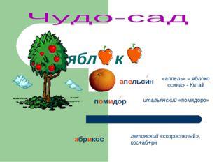 ябл к «аппель» – яблоко «сина» - Китай апельсин помидор итальянский «помидоро