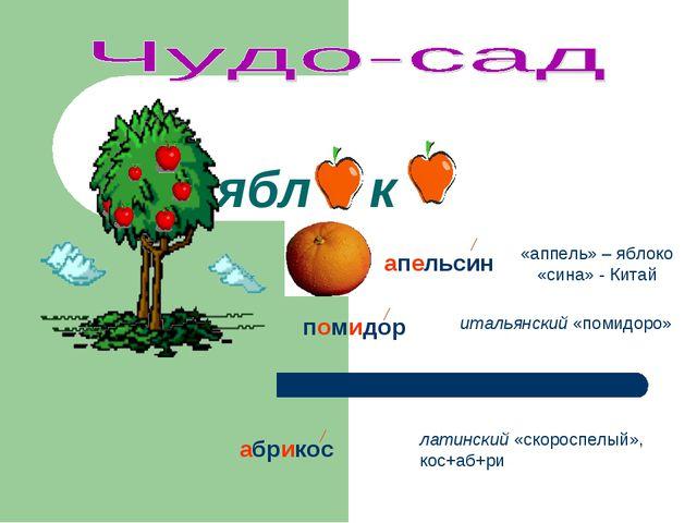 ябл к «аппель» – яблоко «сина» - Китай апельсин помидор итальянский «помидоро...