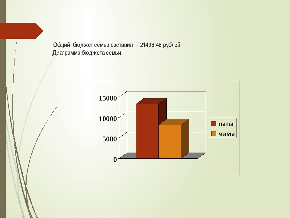 Общий бюджет семьи составил – 21498,48 рублей Диаграмма бюджета семьи