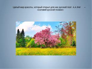 Целый мир красоты, который открыл для нас русский поэт А.А.Фет –  «солове