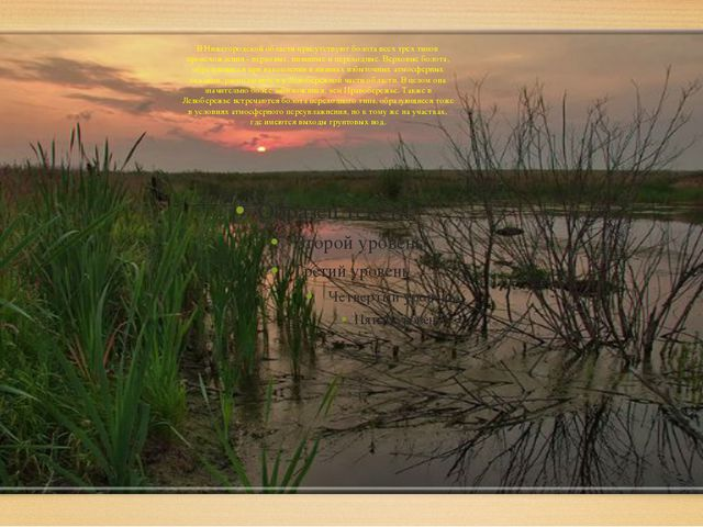 В Нижегородской области присутствуют болота всех трех типов происхождения -...