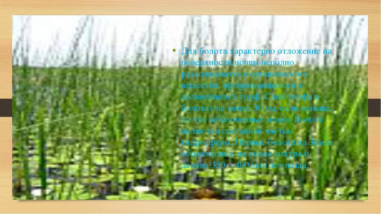 Для болота характерно отложение на поверхности почвы неполно разложившегося...