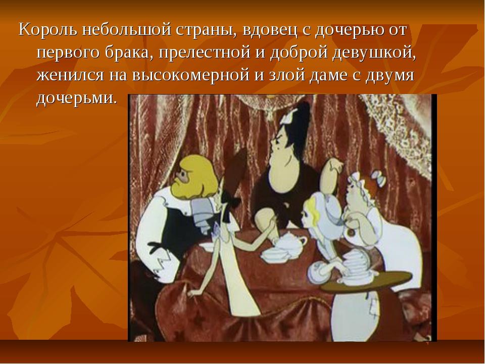 Король небольшой страны, вдовец с дочерью от первого брака, прелестной и добр...