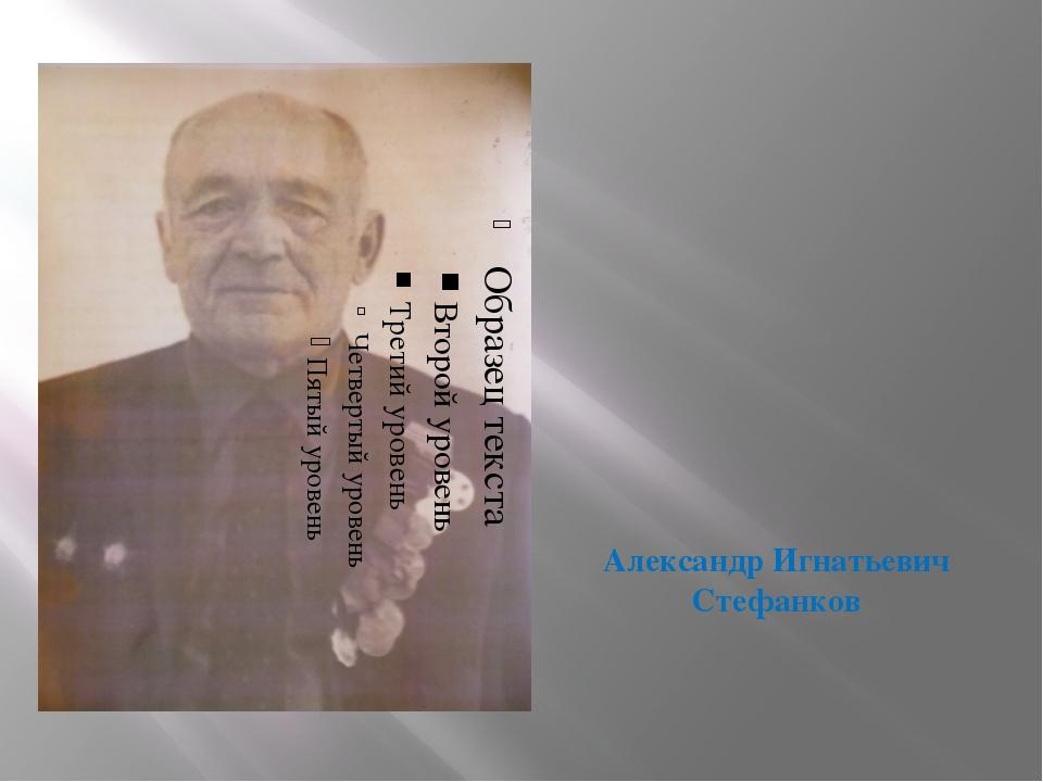 Александр Игнатьевич Стефанков