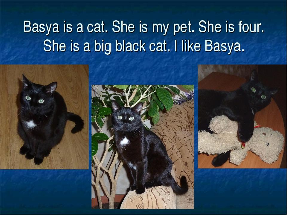 Basya is a cat. She is my pet. She is four. She is a big black cat. I like Ba...