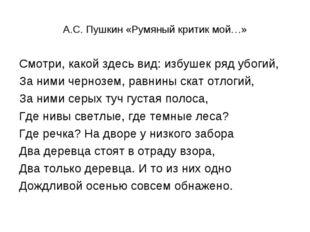 А.С. Пушкин «Румяный критик мой…» Смотри, какой здесь вид: избушек ряд убогий