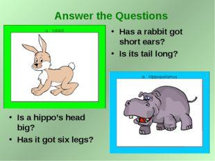Is a hippo's head big? Has it got six legs? Has a rabbit got short ears? Is i