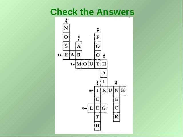 Check the Answers