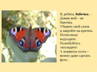 Я, ребята,бабочка… Домик мой – не баночка. Уберите свой сачок и закройте на