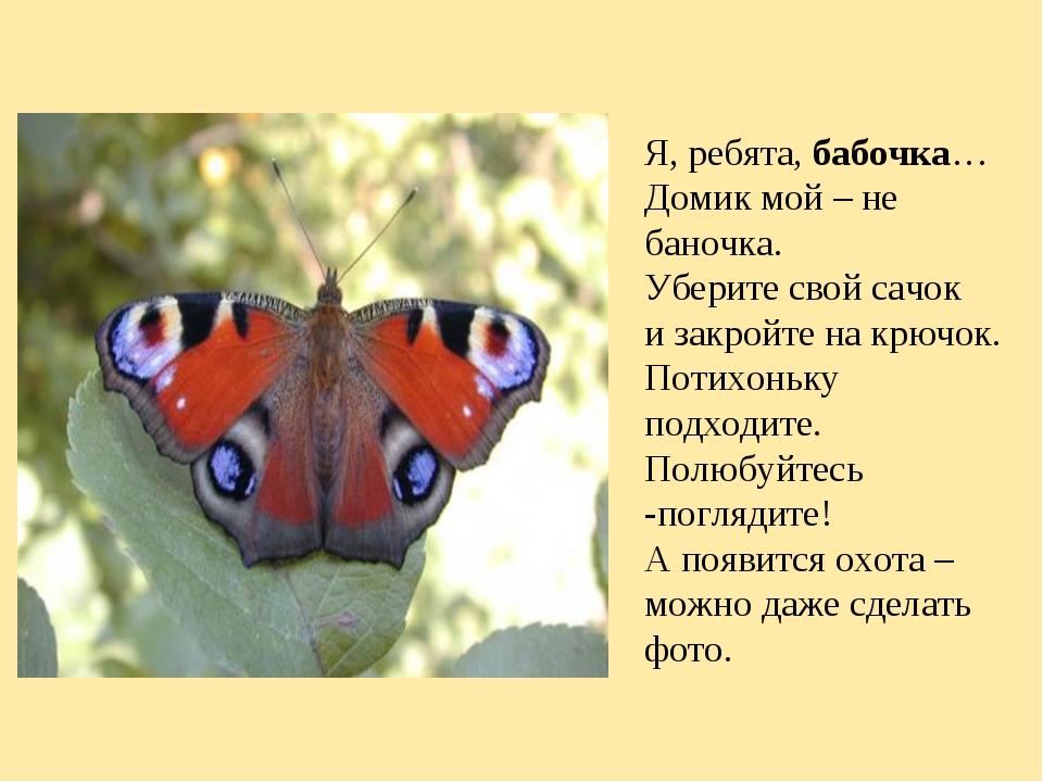 Я, ребята,бабочка… Домик мой – не баночка. Уберите свой сачок и закройте на...