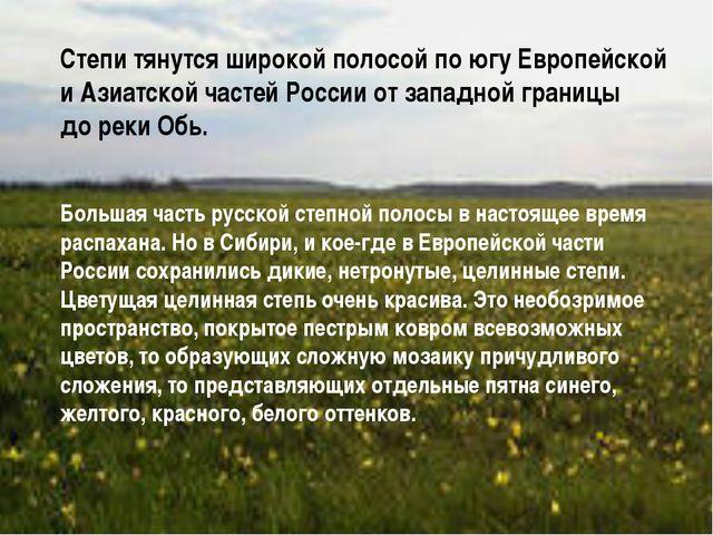 Степи тянутся широкой полосой по югу Европейской и Азиатской частей России от...