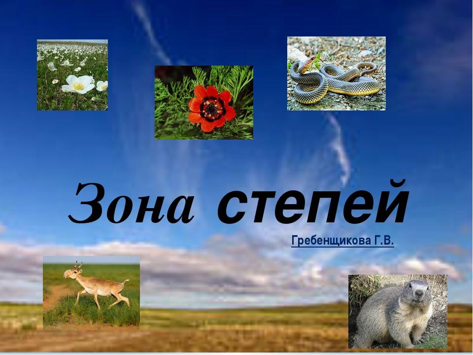 Гребенщикова Г.В. Зона степей