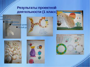 Результаты проектной деятельности (1 класс)
