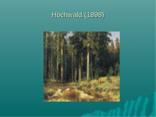 Hochwald.(1898)