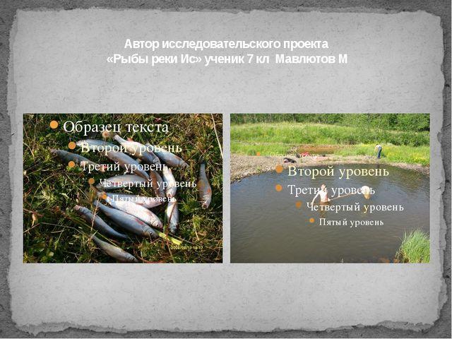 Автор исследовательского проекта «Рыбы реки Ис» ученик 7 кл Мавлютов М