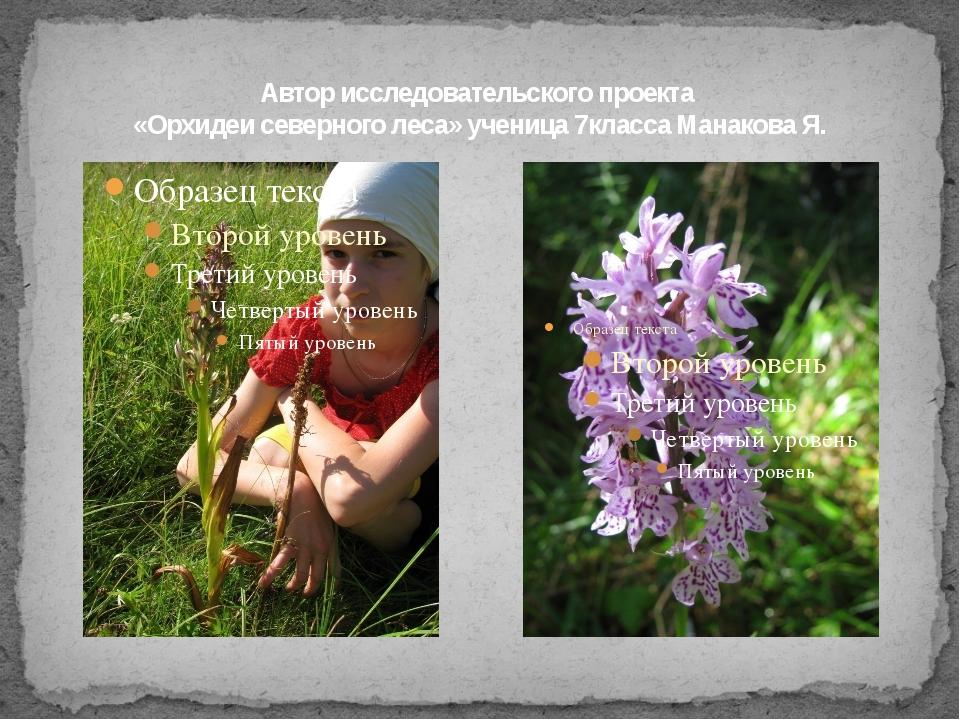 Автор исследовательского проекта «Орхидеи северного леса» ученица 7класса Ман...