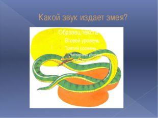 Какой звук издает змея?