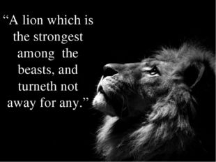 """A lion which is the strongest among the beasts, and turneth not away for any."""