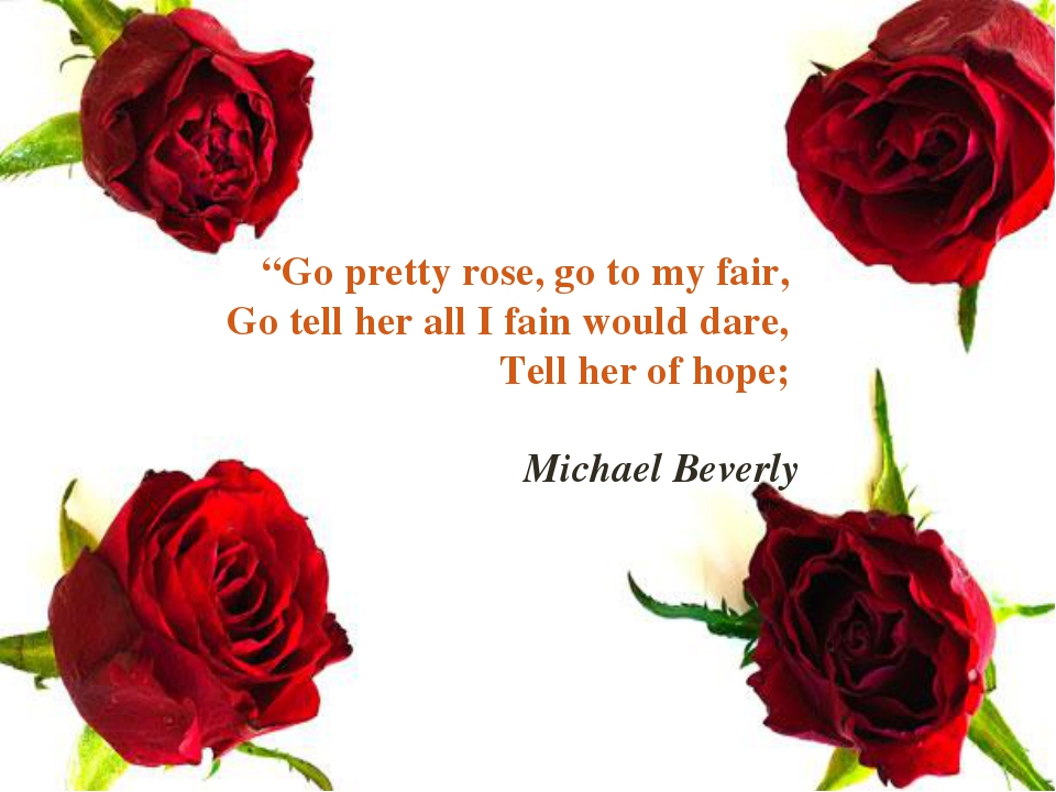 """Go pretty rose, go to my fair, Go tell her all I fain would dare, Tell her o..."