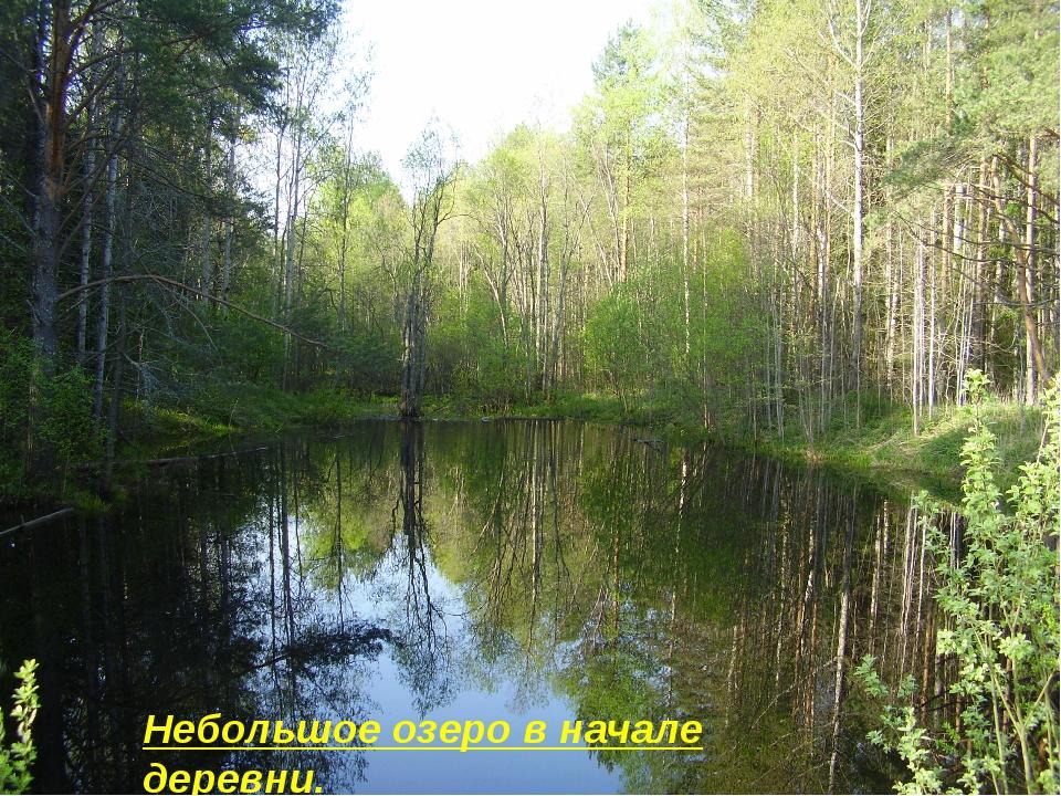 Небольшое озеро в начале деревни.