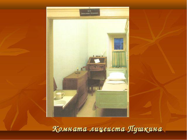 Комната лицеиста Пушкина