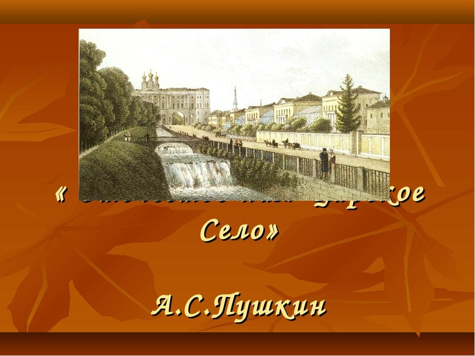 « Отечество нам Царское Село» А.С.Пушкин