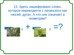 13. Здесь зашифровано слово, которое переводится с латинского как «изгиб, дуг