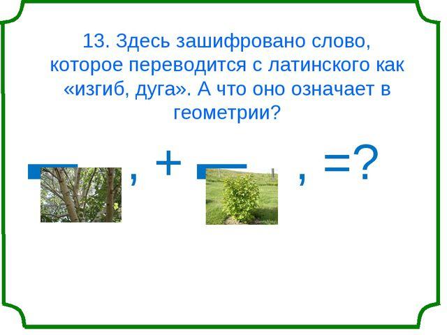 13. Здесь зашифровано слово, которое переводится с латинского как «изгиб, дуг...