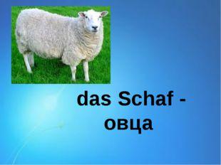 das Schaf - овца