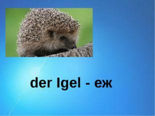 der Igel - еж