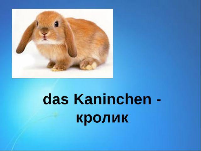 das Kaninchen - кролик