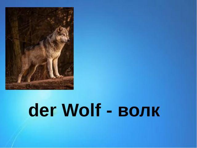 der Wolf - волк