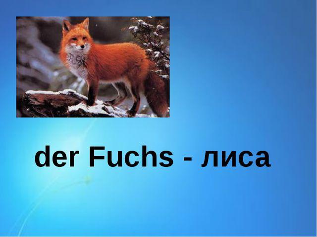 der Fuchs - лиса