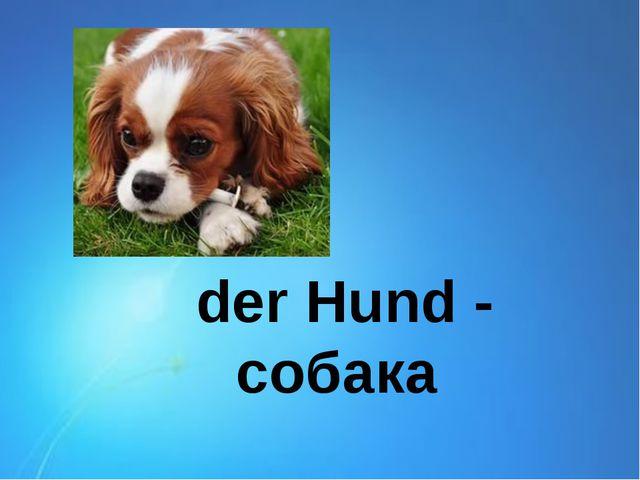 der Hund - собака
