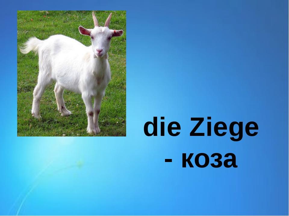 die Ziege - коза