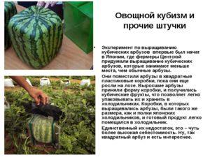 Овощной кубизм и прочие штучки Экспериментпо выращиванию кубических арбузов