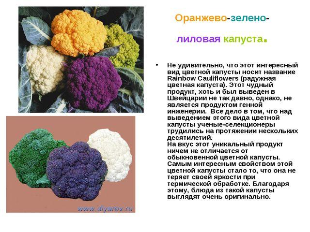 Оранжево-зелено-лиловая капуста. Не удивительно, что этот интересный вид цвет...