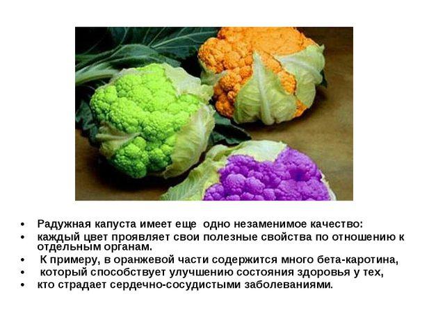 Радужная капуста имеет еще одно незаменимое качество: каждый цвет проявляет с...